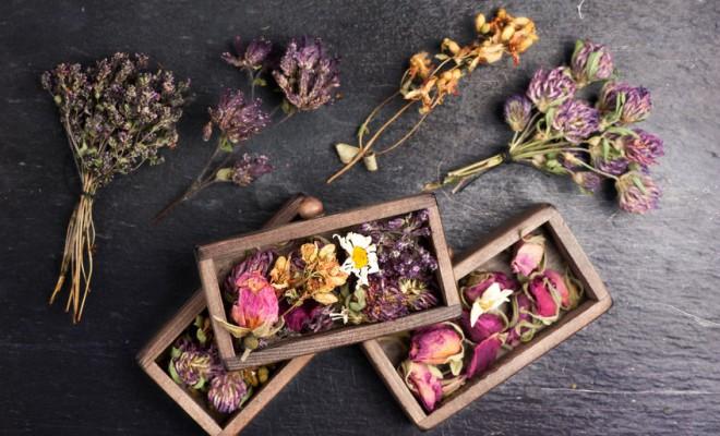 5 Idées pour parfumer sa maison naturellement