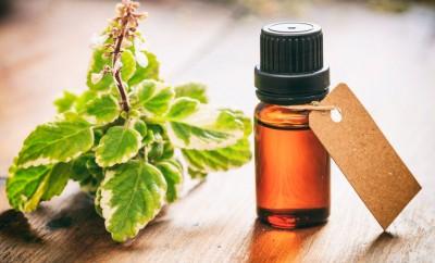 L'huile essentielle de tea tree pour soigner sa peau